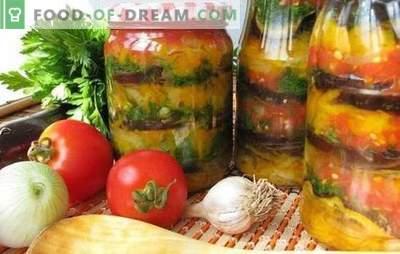 Armėnijos užkandžiai žiemai: skanus, lengvas, greitas. Geriausi armėnų užkandžių receptai žiemai su pomidorais, baklažanais, cukinija, pipirais