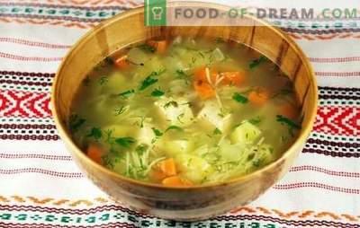 Vištienos ir bulvių sriuba: patrauklus ir maistingas patiekalas. Tinkamas vištienos sriubos paruošimas su bulvėmis