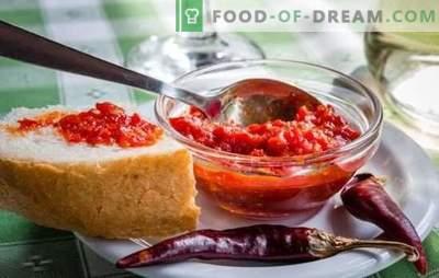 Satsabelo padažas yra kvapni papildomoji medžiaga. Vynuogių, vyšnių slyvų, slyvų, pomidorų pasta, krakmolo, riešutų padažo satsabel variantai