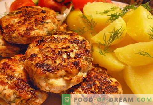 Vištienos maltos mėsos - geriausi receptai. Kaip tinkamai ir skaniai virti smulkintus vištienos kepsnius.