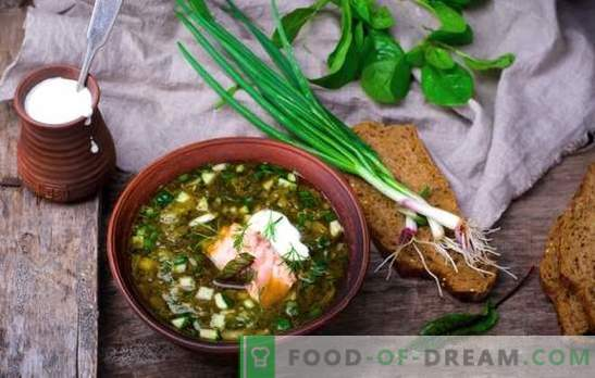 Rusijos okroshka yra senoji sriuba! Tradicinio rusų okroshko receptai dėl giros, išrūgų, sultinio, jogurto
