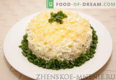 Sluoksniuotos salotos - receptas su nuotraukomis ir aprašymas