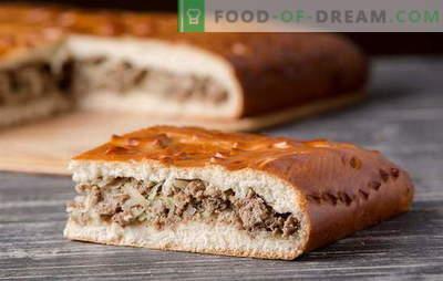 Mielių tešlos mėsos pyragaičiai: išsamūs receptai. Senas tradicijas ir naujas idėjas mielių tešlos mėsos pyragams