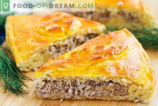 Pyragai ir mėsos pyragaičiai yra geriausi receptai. Kaip tinkamai ir skaniai virti mėsos pyragus.