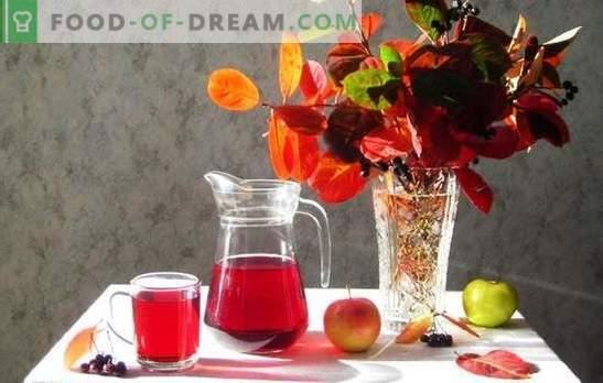Compost de fructe de padure cu mere pentru iarnă - minim de hassle, gust maxim. Gatiti