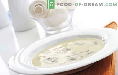 """""""Champignon"""" kremo sriuba yra sudėtingas, bet įperkamas patiekalas kiekvienam skoniui. Šampinjono kremo sriuba su skirtingais bazės variantais"""