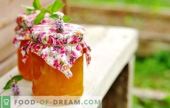Meliono uogienė su apelsinu ir citrina yra neįprastas skonių derinys. Meliono uogienės ruošimas apelsinų žiemą