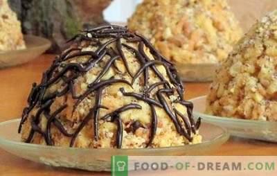 """Klasikinis """"Anthill"""" pyragas su kondensuotu pienu yra paprastas desertas. Rinkinys """"Anthill"""" klasikinis su kondensuotu pienu"""