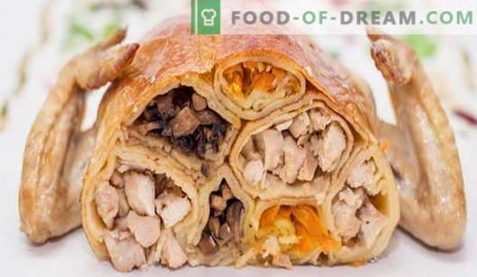Įdaryti vištiena - geriausi receptai. Kaip virti įdaryti vištieną krosnyje.