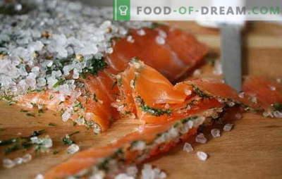 Hoe vis te zouten thuis? De beste manieren om rode vis thuis te zouten
