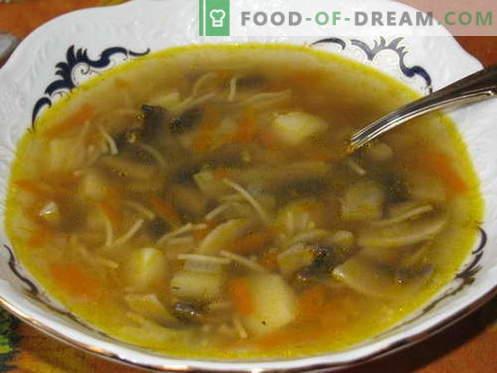 Grybų sriuba - geriausi receptai. Kaip tinkamai ir skaniai virti grybų sriuba.