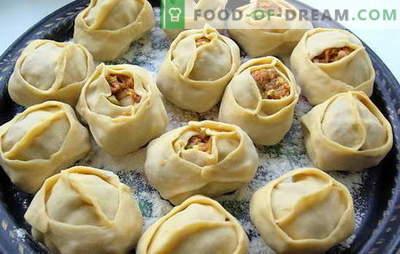 Rūgštis su bulvėmis ir smulkinta mėsa yra rusų patiekalas. Įvairių koldūnų receptai su bulvėmis ir smulkinta mėsa: paprastas ir tingus