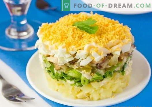 Sluoksniuotos salotos su grybais - geriausių receptų pasirinkimas. Kaip tinkamai ir skaniai virti sluoksniuotas salotas su grybais.