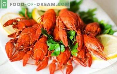 How to cook crayfish correctly, what are they usually boiled? How much to cook crayfish: traditional and author's recipes of boiled crayfish