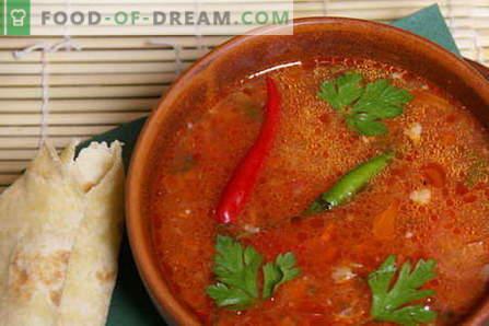 Beef Kharcho - geriausi receptai. Kaip tinkamai ir skaniai virti jautienos kharcho.